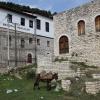 Albaania