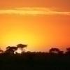Tansaania: Serengeti ja Ngorongoro